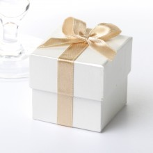Ribbon Favour Box (10)