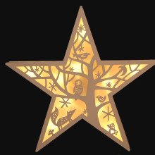 LED Winter Star Light